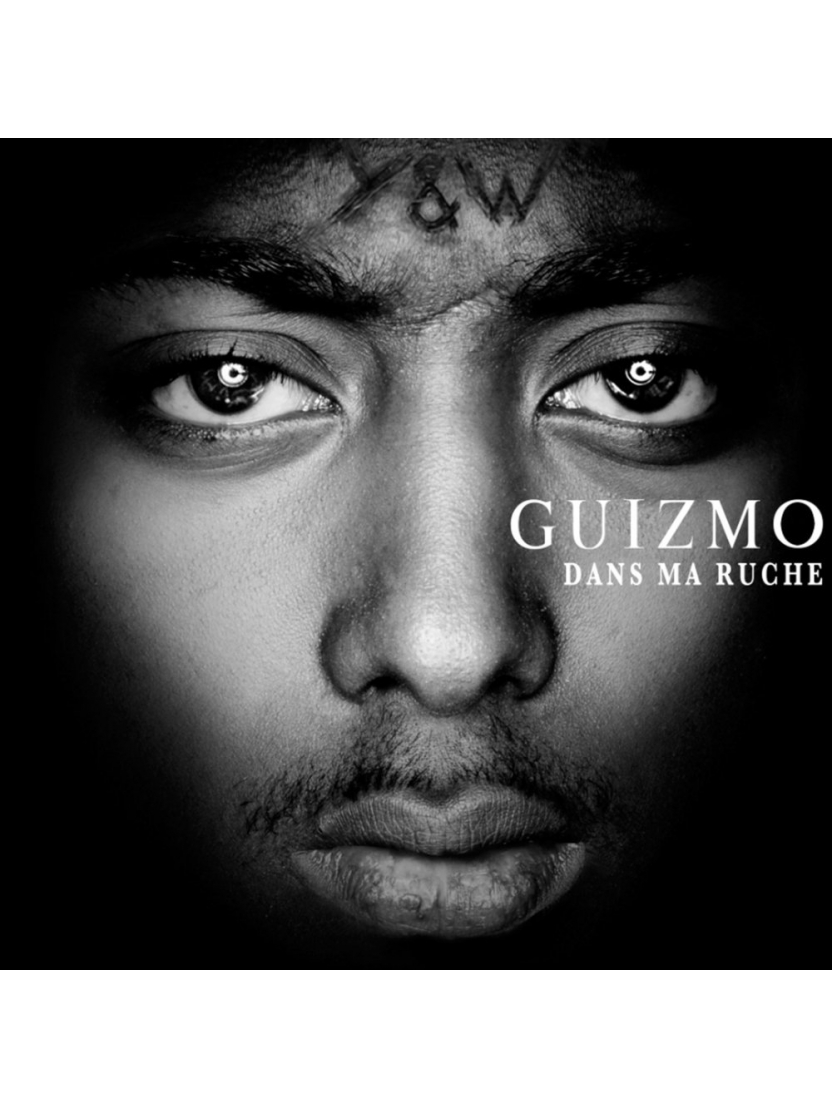 """Album cd """"Guizmo"""" - Dans Ma Ruche"""