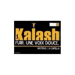 Maxi vinyl Kalash une voix douce