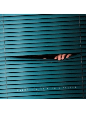 """album vinyl flynt """"ca va bien se passer """""""